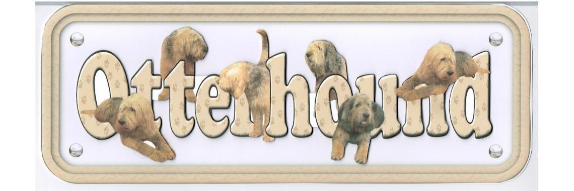 Dog Breeds Otterhound