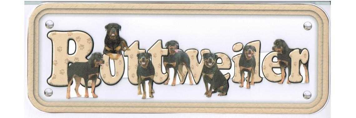 Dog Breeds Rottweiler