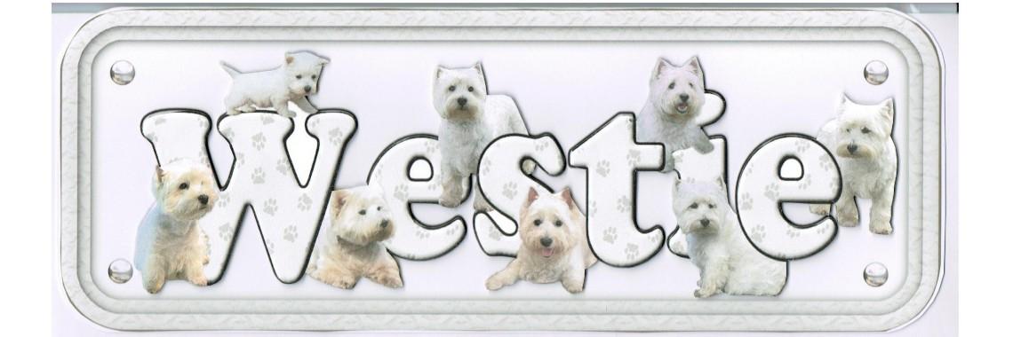 Dog Breeds West Highland Terrier