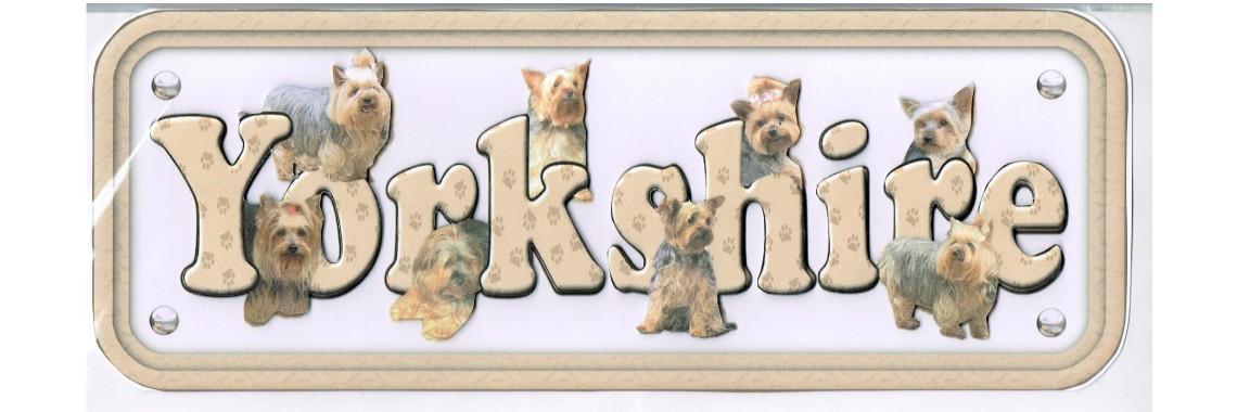 Dog Breeds Yorkshire Terrier